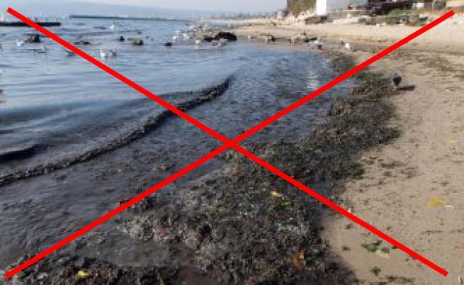 Море-мръсотия